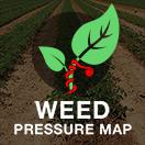 WEED Pressure Map