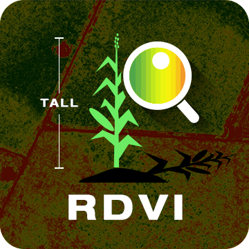 Renormalized Difference Vegetation Index